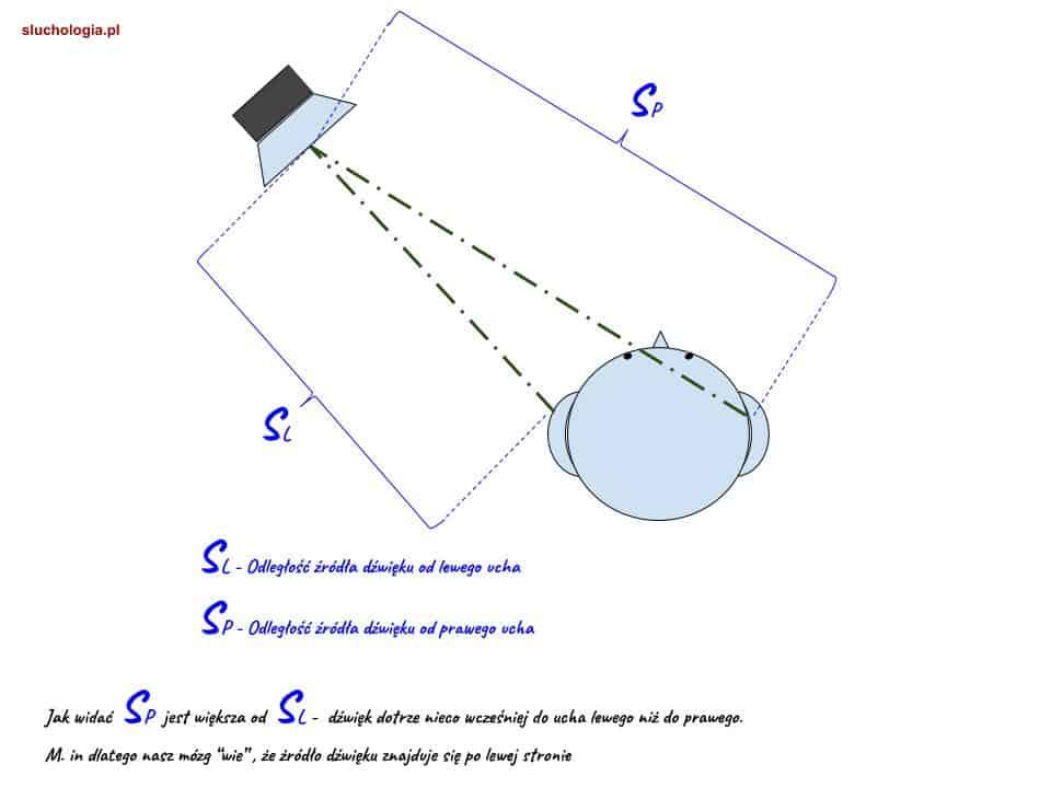 Wybrane rodzaje charakterystyk kierunkowych mikrofonów